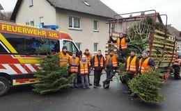 Jugendfeuerwehren sammelten etwa 1.600 Weihnachtsbäume ein