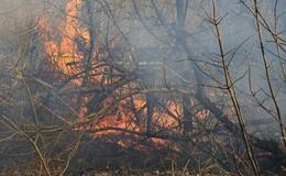 Defekte Bremsen lösen Brand aus: Bahndamm in Friedlos fängt Feuer