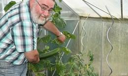 Kleingärten im Trend  - hier wachsen Obst, Gemüse und das Miteinander