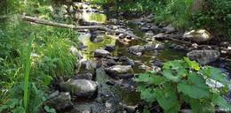 Es ist erneut zu trocken: Wasserentnahme ab sofort verboten