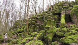 Interessantes Ausflugsziel: Altenburgskopf zwischen Schotten und Gedern