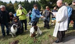 Tiersegnung auf dem Kreuzberg: Mitverantwortung für Schöpfung des Menschen
