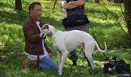 SAT1-Moderator Jochen Bendel dreht in Alsfeld für Haustier sucht Herz