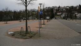Bäume müssen dem Hessentag weichen: Mehr Platz für die Arena