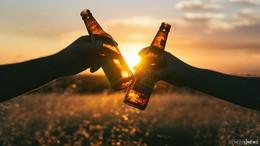 Tag des Bieres in Logo-Getränkemärkten: Mehr als 250 interessante Biere