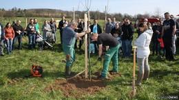 Apfelbaumpflanzaktion von Förstina Sprudel geht in die zehnte Runde