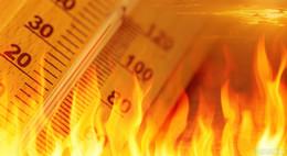 Wüstenhitze mit bis zu 40 Grad im Anmarsch - Wer hat den besten Abkühl-Tipp?