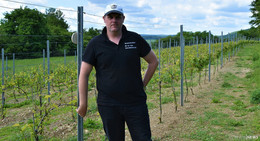Weingut Steinau: Die Weinbruderschaft lässt alte Geschichte wieder aufleben