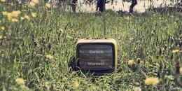 Erstes Open-Air-Filmfestival Wiesenflimmern am 10. August