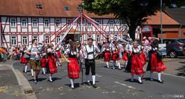 Festumzug der Bimbacher Musikanten: Farbenfroher Lindwurm - Bilderserie (1)