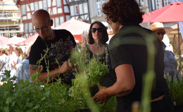 11. Kräuter- und Märchenmarkt: von Blumen, bis Kräuter und Handwerkerkunst