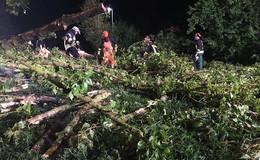 Tornado über Hessen? - Millionenschäden durch schwere Unwetter