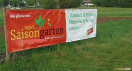 Frust statt Ernte: Gemüseklau und Vandalismus im Tegut-Saisongarten