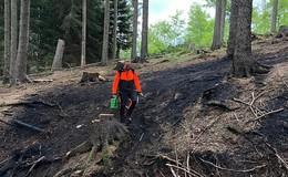 Feuer im Seulingswald gelöscht - ständige Kontrolle trotzdem notwendig